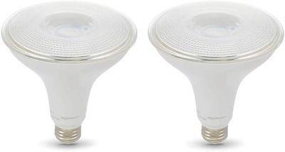 Amazon Basics LED Light Bulbs 2-Pack