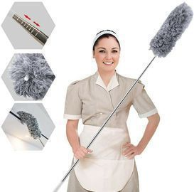 Microfiber Duster with Extra Long Pole