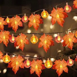 Maple String Lights