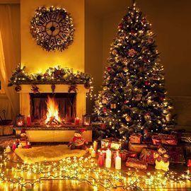 99' 300 LED Christmas Fairy Lights