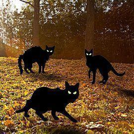 3 Pack Halloween Cat Yard Decorations