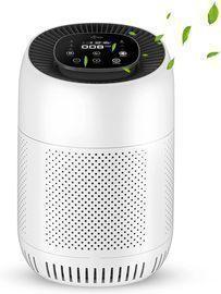 True HEPA Filter Room Air Cleaner