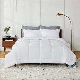 Bedsure Queen Comforter Duvet Insert (White, Queen)