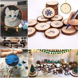 20pc Natural Wood Slices