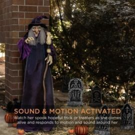5' Wicked Wanda Standing Animatronic Witch With Sounds