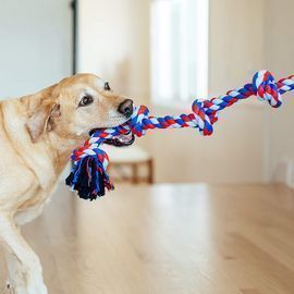 Outward Hound Toys Dogs Crave