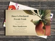 Vistaprint - 50% Off Business Cards   Today Only!