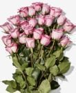 2 Dozen Roses (Amazon Prime Members)