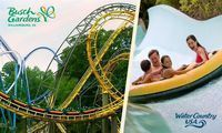 3-Day Admission for One to Busch Gardens & Water Country USA