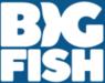 Big Fish Games Coupons